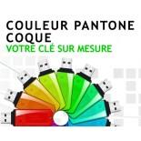 Coloris sur mesure coque Pantone clé USB publicitaire